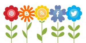 Growing Social Media crm